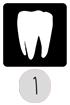 1. Munnen - Tänder
